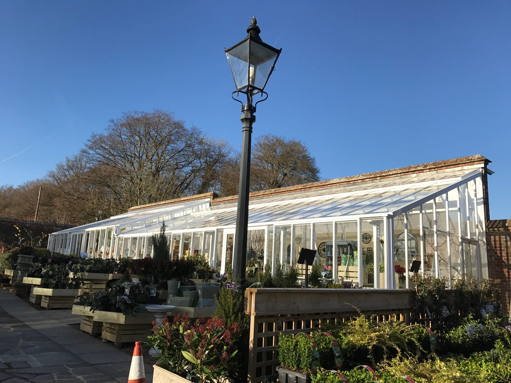 New Griffin Glasshouse at Orchard Nursery 3